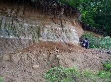 降って積ったテフラ 白っぽい層が降下軽石層で、くり返し爆発的な噴火が起きたことがわかります。