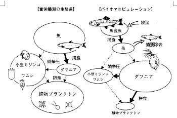 img_701_9.jpg