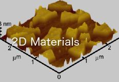 2D Materials Division