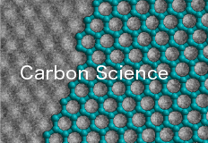 Carbon Science Division