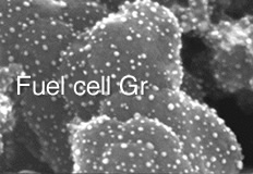 Fuel cell Gr