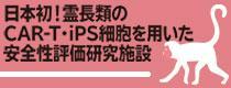 日本初!霊長類のCAR-T・iPS細胞を用いた安全性評価研究施設
